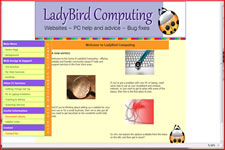 www.ladybirdcomputing.co.uk/11/